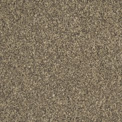 Carefree Fascination Dark Elm