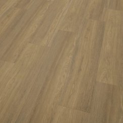 Cavalio Projectline Brushed Oak Medium 2965